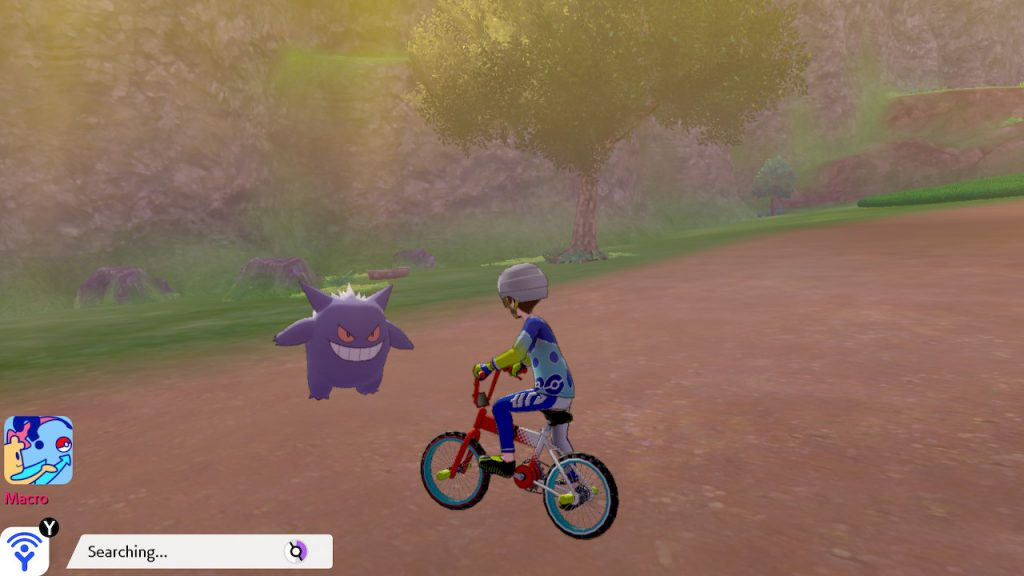 pokemon sword and shield wild area